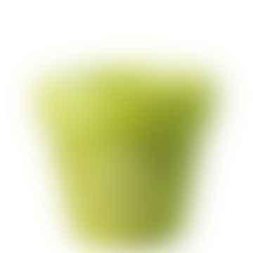 Green Pot Candle Lemongrass Aroma