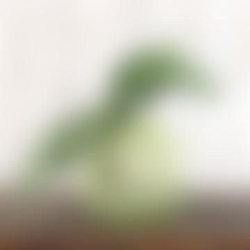 34cm Orchid Leaves & Roots Faux Stem