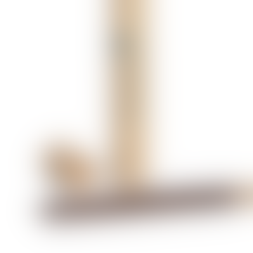 Incense Sticks Sage