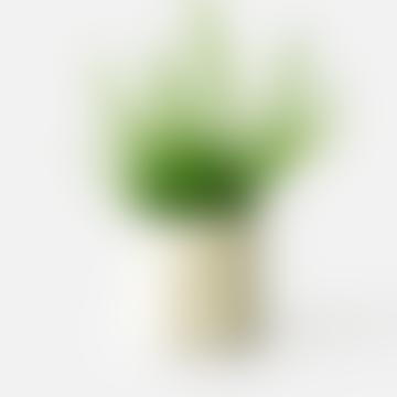 Sand Jesmonite Planter / Tealight Holder 6 cm