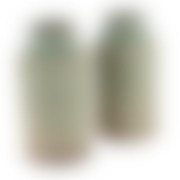 Crassula Tall Vase