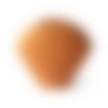 Ceramic Shell Vase Orange