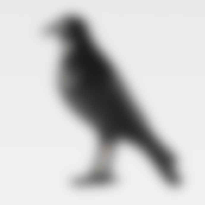 The Naughty Crow (Black Legs)