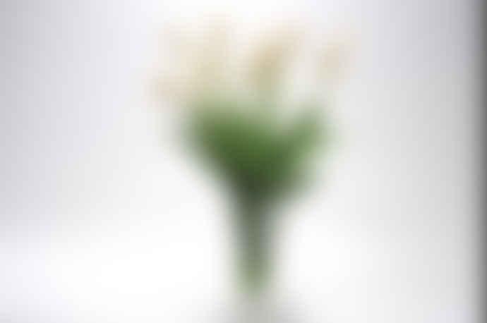 Silk-Ka White Tulips