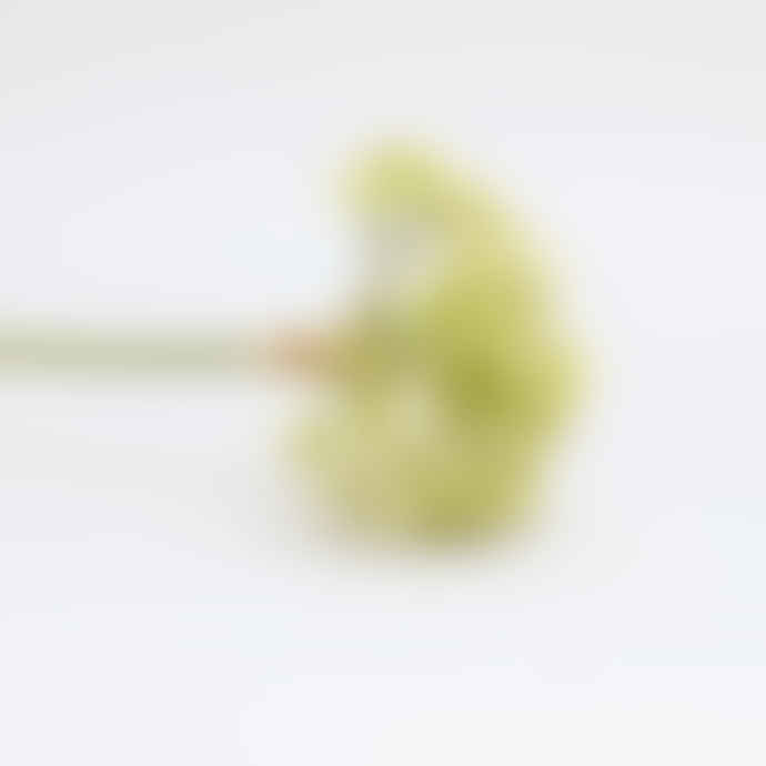 Giant Faux Allium Stem