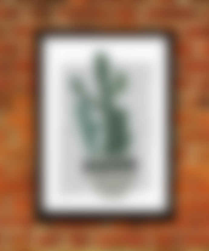 East End Prints  Cactus A3 Unframed Print