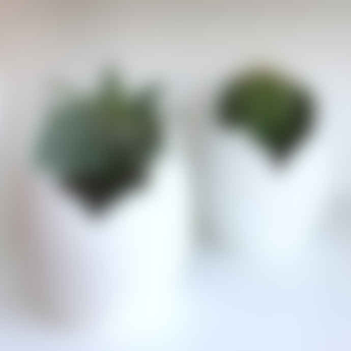 Bloomingville White Porcelain Egg Plant Pot with Green Glaze
