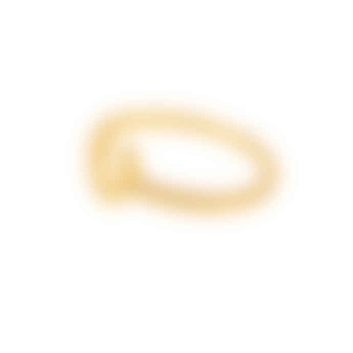 Carousel Jewels  Gold Minimal Lucky Horseshoe Ring