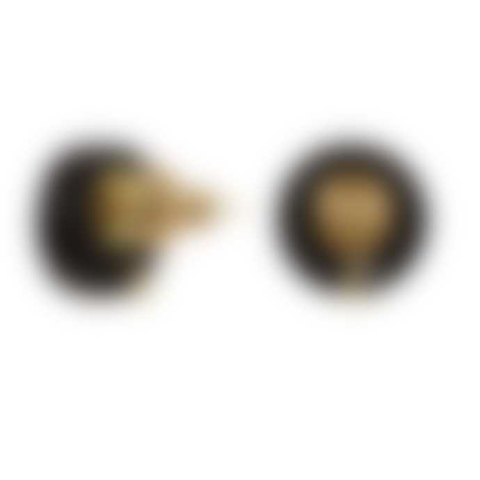 Toolally Hummingbird Earrings – Orange