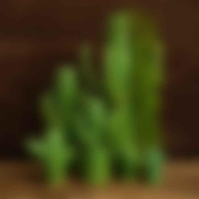 Serax Medium Cactus Vase