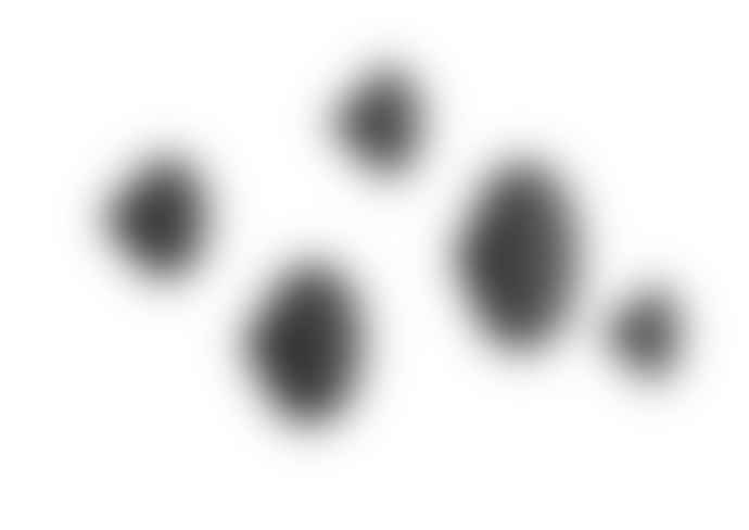 Muuto Black Dots (pack Of 5) Coat Hooks