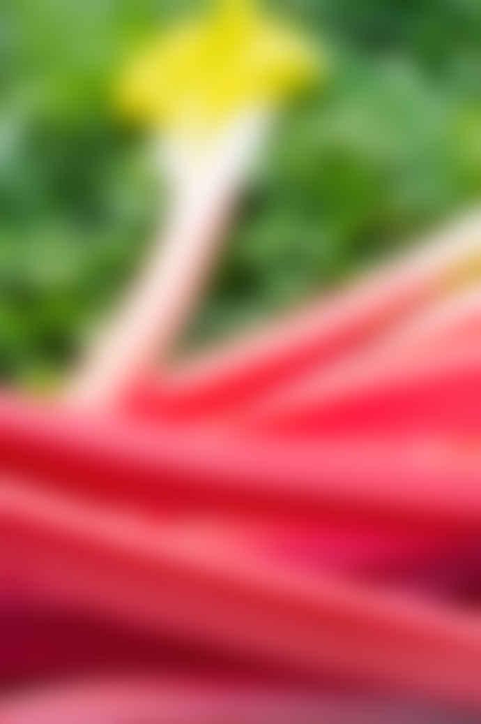 Noble Isle Rhubarb Rhubarb! Luxury Body Hydrator
