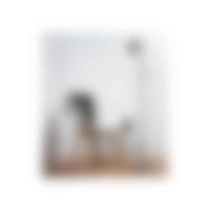 Nordlux Lighting  Grey Nexus 10 Floor Light