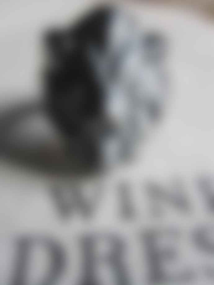 Window Dressing The Soul Oxidised Silver Lion Head Ring