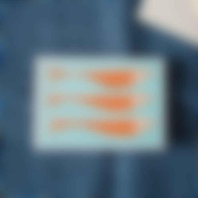 Cambridge Imprint Turquoise & Orange Set Of 10 Fish Cards & Envelopes