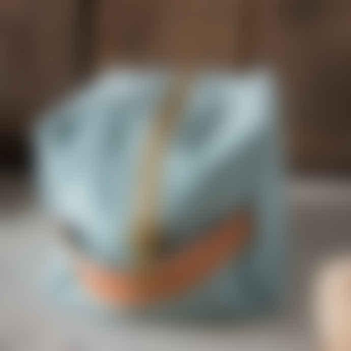 La Cerise Sur Le Gateau Duck Egg Cube Toiletry Bag