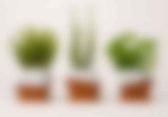 Nick Fraser Small Half-glazed Set of Three Geometric Pots