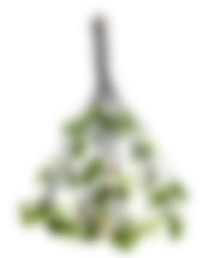 Fiona Walker England Felt Mistletoe Twigs