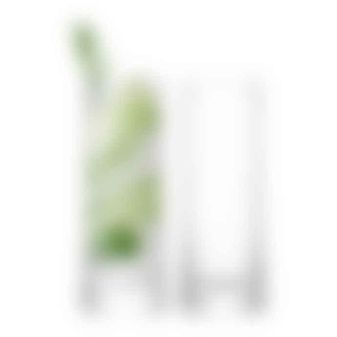 LSA International Gin Highball Glasses (Set Of 2)