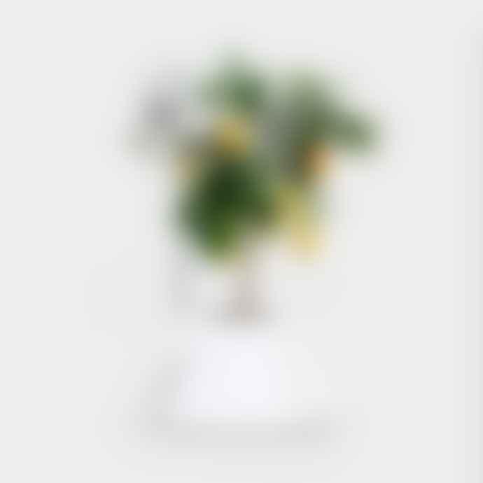 Vitamin I V Plant Pot