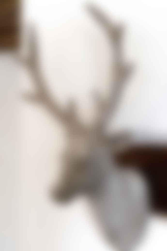 The Forest & Co. Wall Hung Stag Head