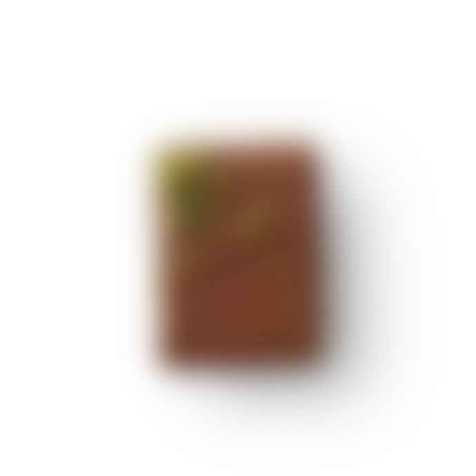 Melt Box Of 18 Pistachio Marzipan Milk Chocolate