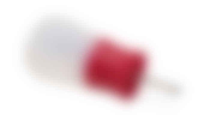 Joseph Joseph Flavour Bud Red Marinade Injector