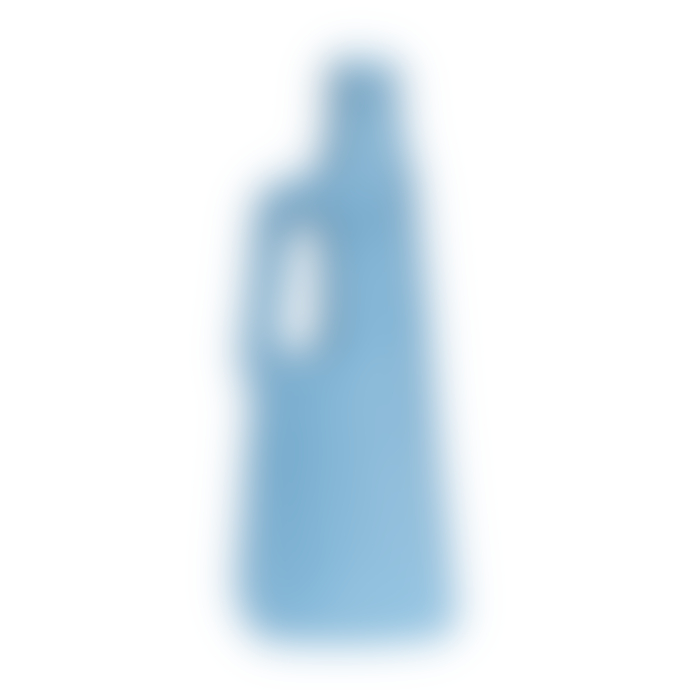 Foekje Fleur Bottle Vase 9