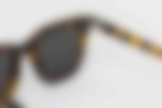 Monokel Eyewear Solid Grey Lens Robotnik Havana Eyewear