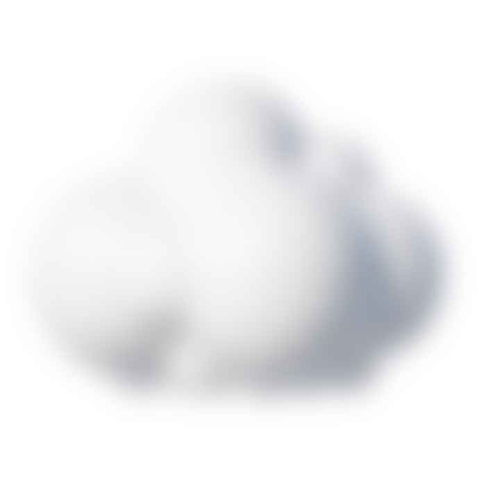 My Small World Toy Store Plui Rain Cloud