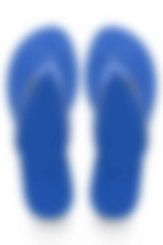 Havaianas In Blue Star You Maxi Flip Flops