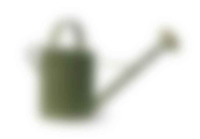 The Forest & Co. Green Galvanised Watering Can