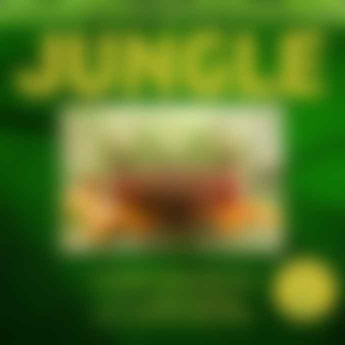 My Small World Toy Store Jungle A Photicular Book