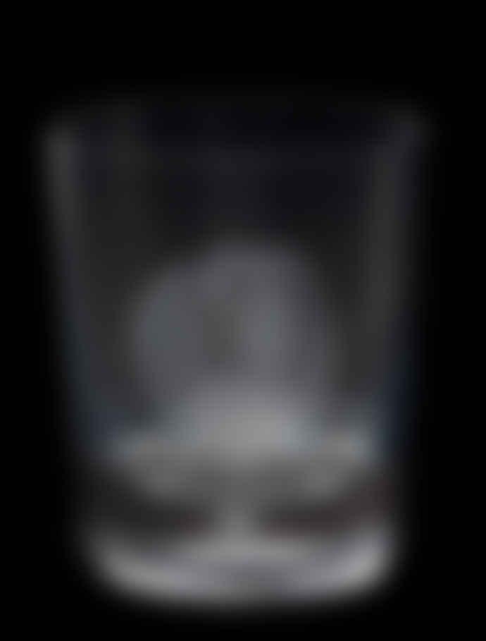 Royal Brierley Springer Spaniel Etched Crystal Whisky Glass