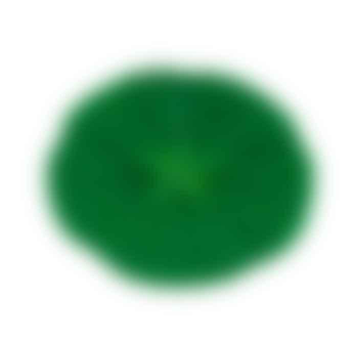 Charles Viancin 15 Cm Green Tomato Lid