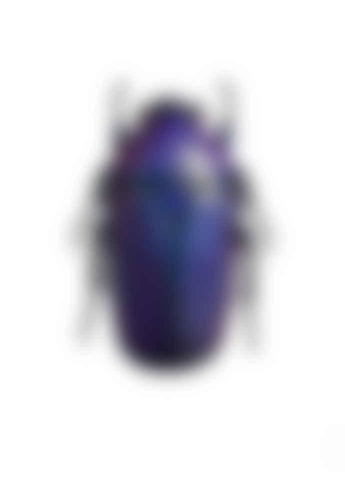 Liljebergs Chlorocala Africana Oertzeni Beetle A4 Print