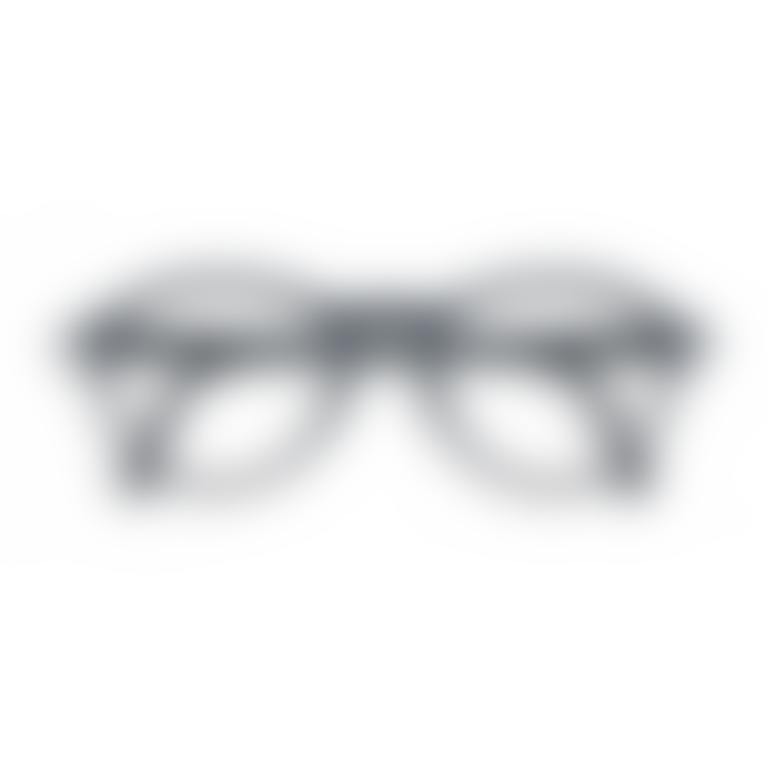 IZIPIZI Foldable Reading Glasses in Grey (Frame Shape: #F)