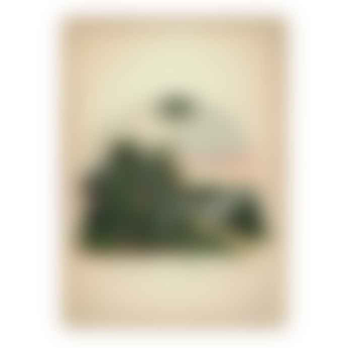 Dybdahl 30x40 Palm Sky Framed Print