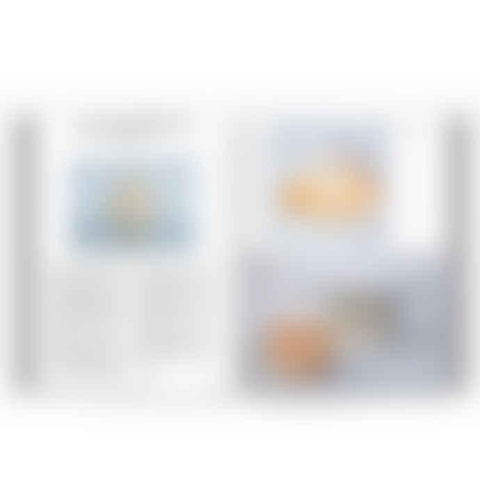 Thames & Hudson Radical Matter Book
