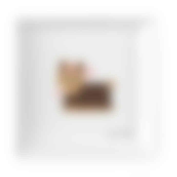 Yorkshire Terrier Ceramic Trinket Tray