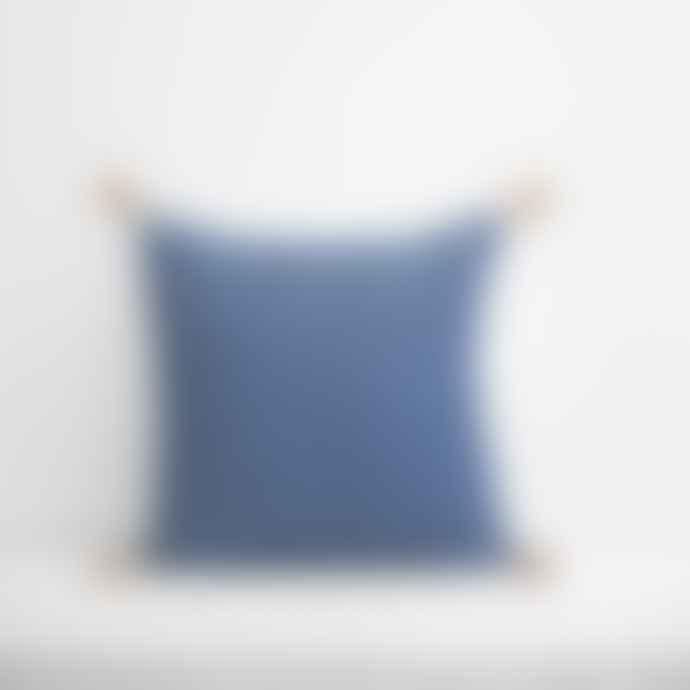 Jamini Duck Blue 16x16 Ashima Pillowcase