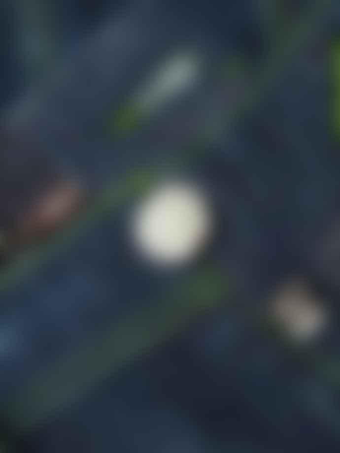 Tramarossa Navy With Green Stitch Leonardo 6 Month Verde Shock D 214 W