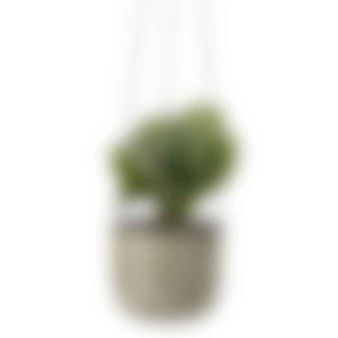 Bloomingville Green Hanging Metal Flowerpot