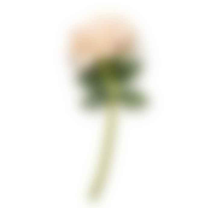 Abigail Ahern Rose Blush Realistic Faux Flower Stem