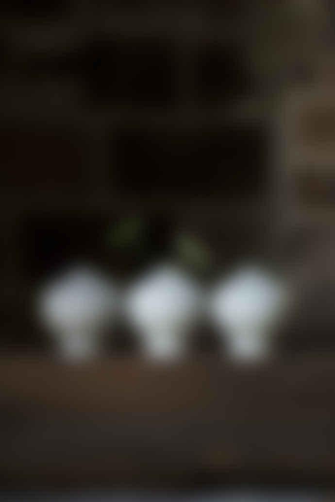 Lindform Cecilia Grey Striped Bud Vase