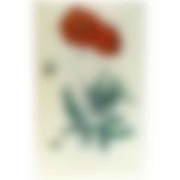 JOHN DERIAN Poppy Papaver Rheas Hand Made Decoupage  Rectangular Glass Tray