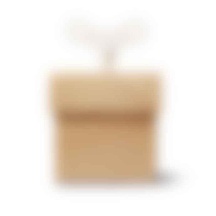 Siebensachen Quadrant Musical Box