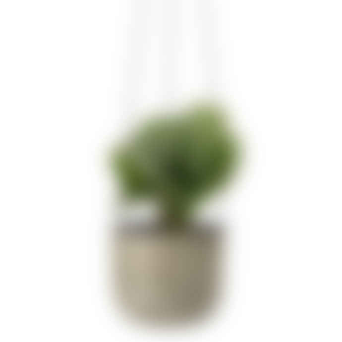 Sage Green Hanging Plant Pot
