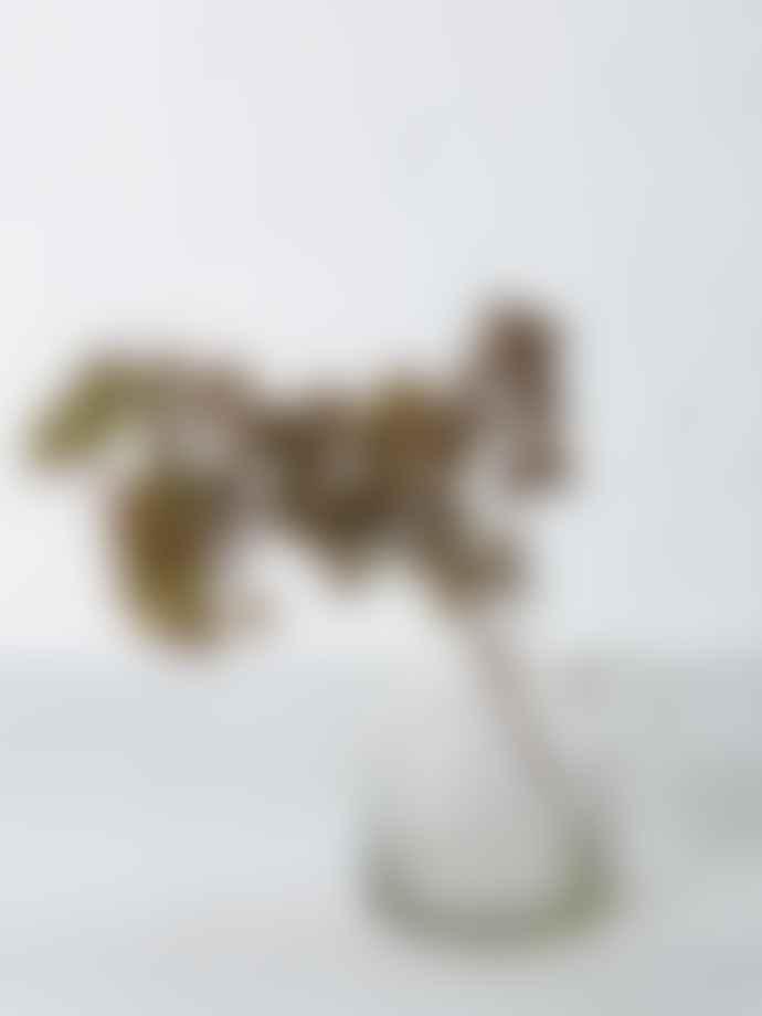 Abigail Ahern Dusk Realistic Faux Pine Branch
