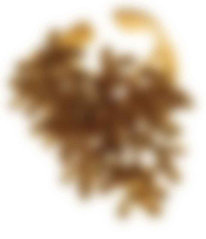 Pendulum Coral Ring